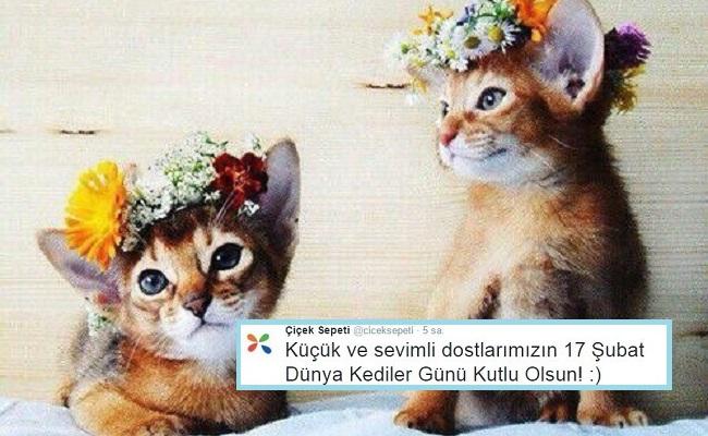 Türk Markalardan Dünya Kediler Günü'ne Özel Miyavlatan Paylaşımlar