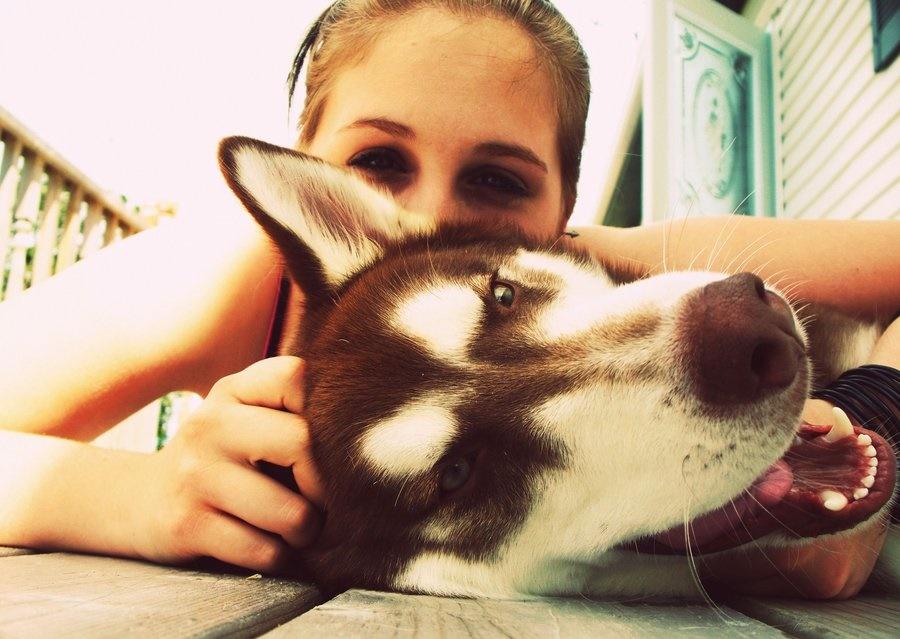 hayvanlari-sevmeki-hayvan-sevgisi-kopekler-kopek