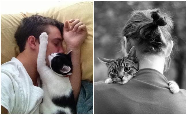 """Kedilerin Aslında """"Nankör"""" Olmadıklarını Hissetmenin 11 Yolu"""