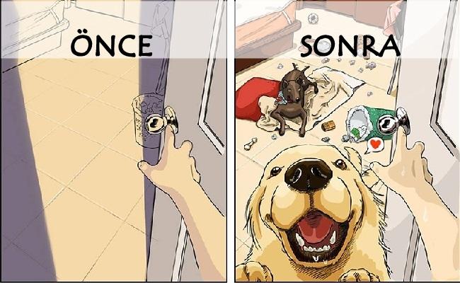Köpek Sahibi Olduktan Öncesini ve Sonrasını Anlatan 8 Eğlenceli Çizim