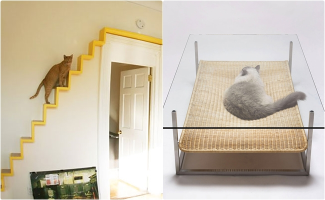 Kediseverlerin Evden Çıkmak İstemeyeceği 19 Kedili Mobilya Önerisi