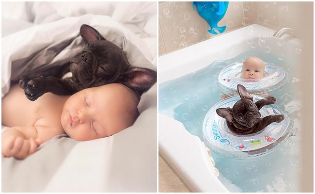Aynı Gün Doğup Birbirlerini Kardeş Sanan Bebek ve Köpeğin Aşırı Huzurlu Hikayesi