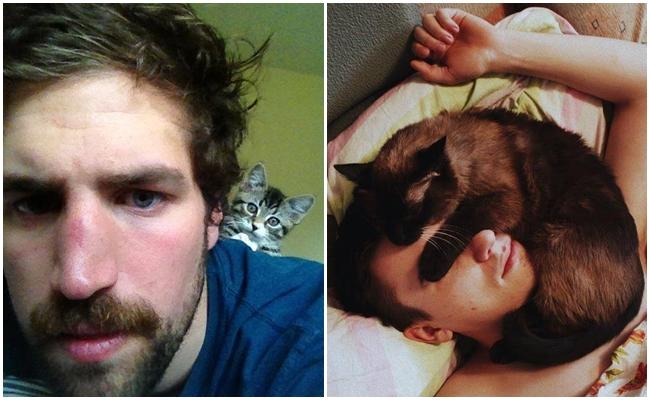 Kedileri Seven Erkeklerin Sizi de Bir Başka Seveceğinin 11 Duygusal Nedeni