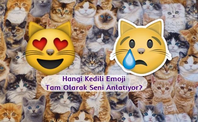 Hangi Kedili Emoji Tam Olarak Seni Anlatıyor?