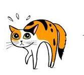 kedi-hareketleri-anlamlari-patiliyo-17