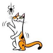 kedi-hareketleri-anlamlari-patiliyo-9