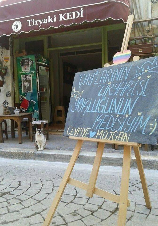 tiryaki-kedi-kafe-patiliyo-13