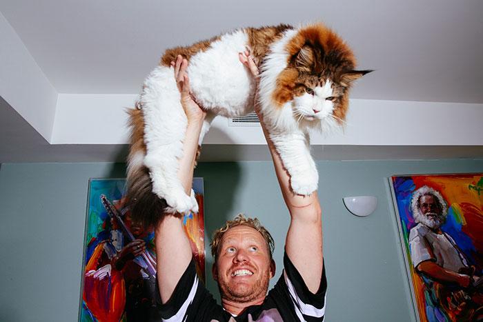 buyuk-kedi-cinsi-patiliyo-8