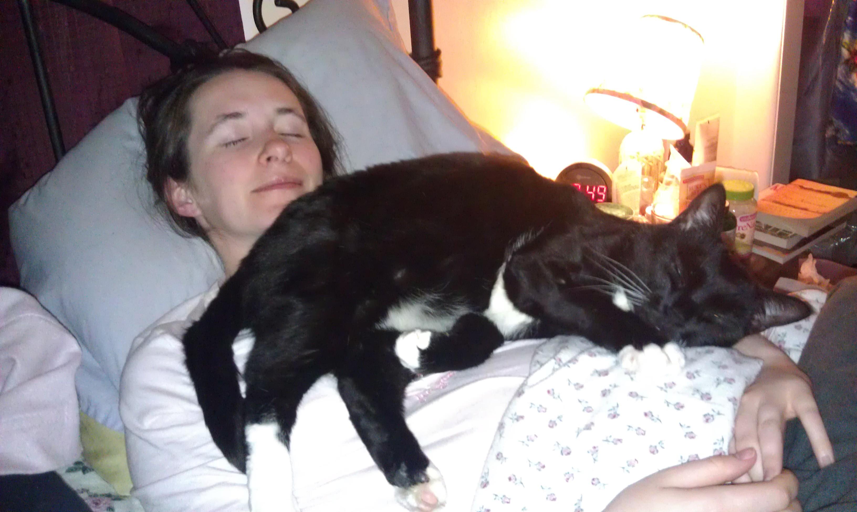 kedi ile uyumak