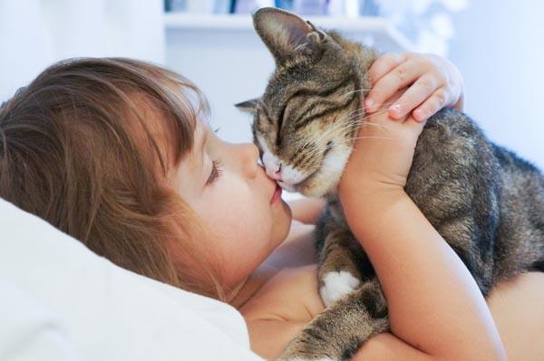 kedi-insanlari-ve-kopek-insanlari-patiliyo-11