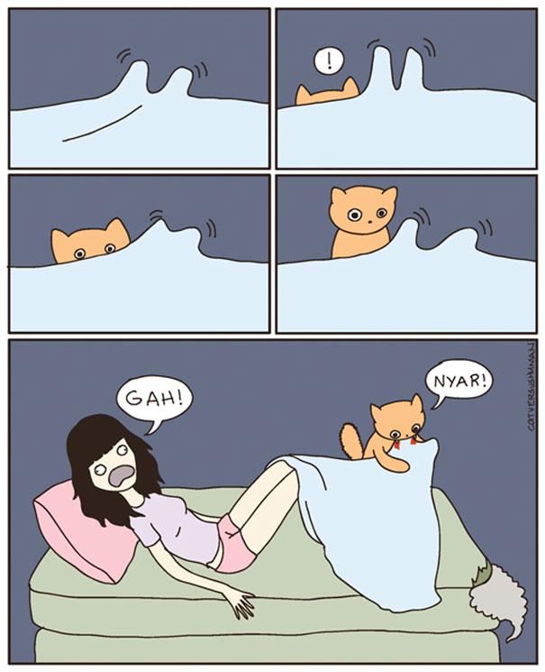 kedilerle-yasamak-nasildir-patiliyo-2