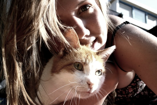 sokaktan-kedi-sahiplenmek-patiliyo-14