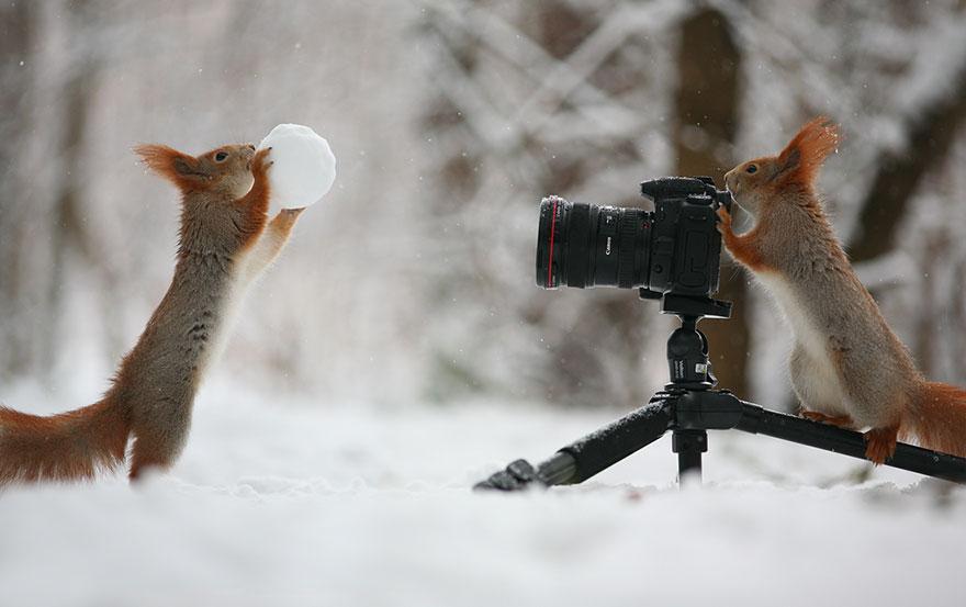 sincap fotograflari