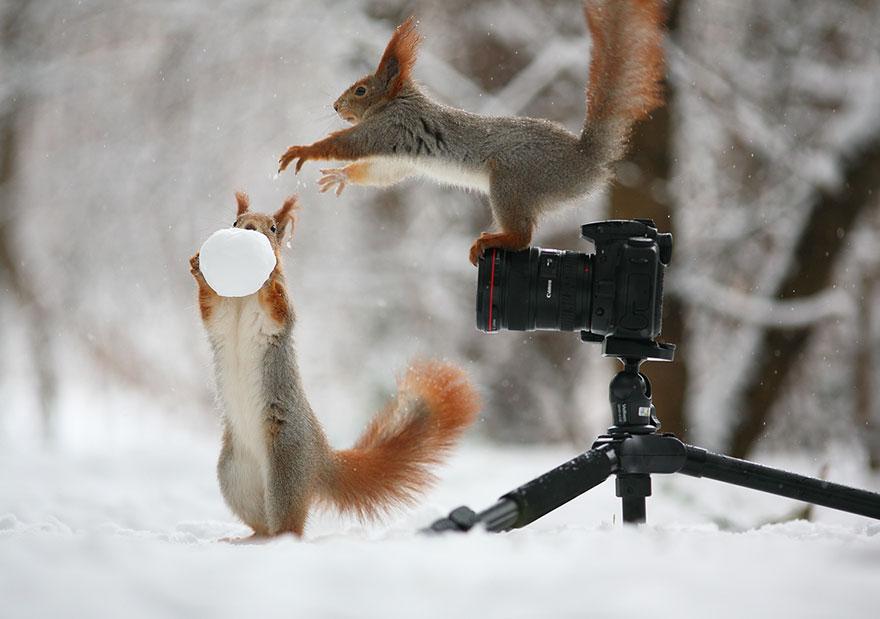 sincap-fotograflari-patiliyo-2