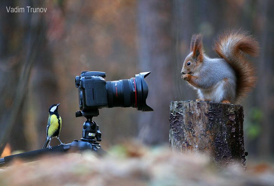 sincap-fotograflari-patiliyo-4
