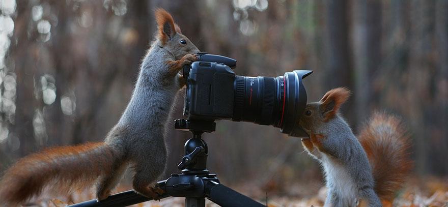 sincap-fotograflari-patiliyo-8