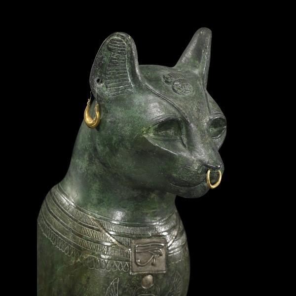 kediler-hakkinda-bilgiler-patiliyo-5