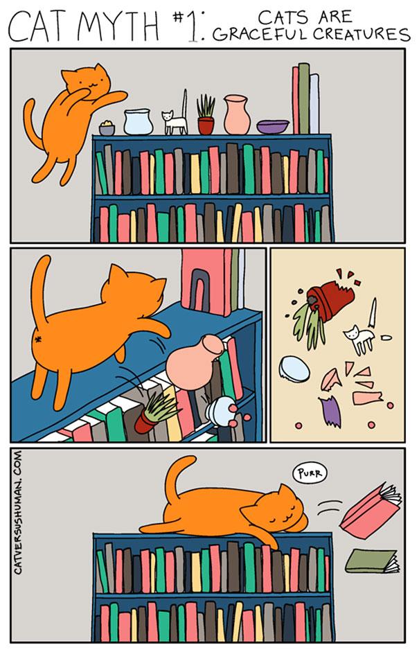 kedilerle-yasamak-nasildir-patiliyo-11