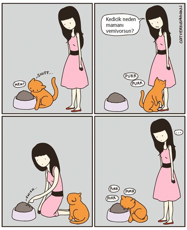 kedilerle-yasamak-nasildir-patiliyo-4