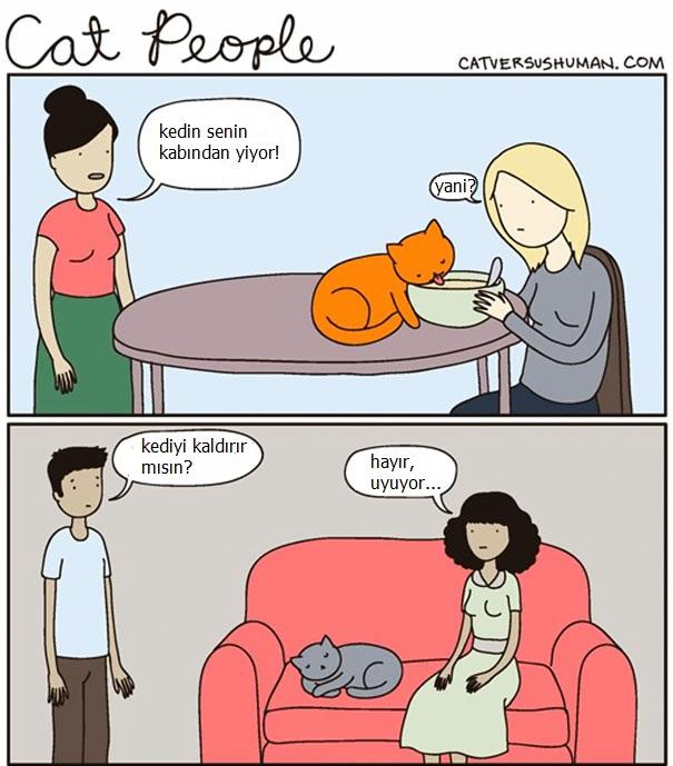 kedilerle-yasamak-nasildir-patiliyo-7