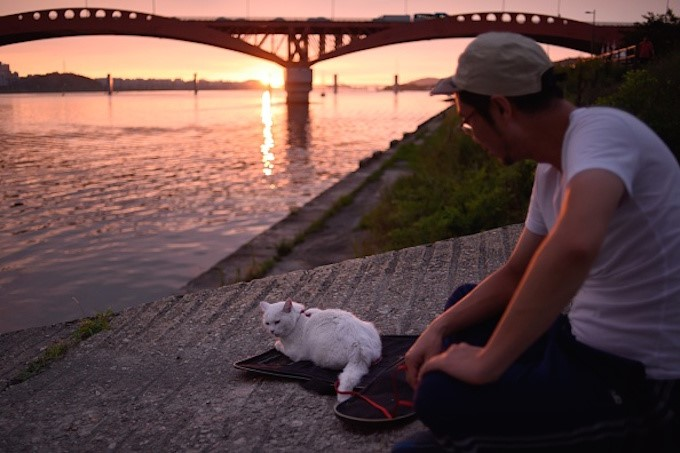 kedim-beni-seviyor-patiliyo-4