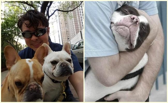 """""""Köpek Gezdirme"""" İşinin En Güzel Mesleklerden Biri Olmasının 5 Nedeni"""