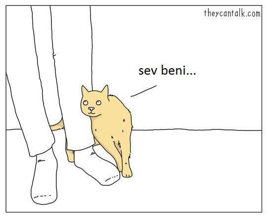 hayvanlar-konusabilseydi-patiliyo-1