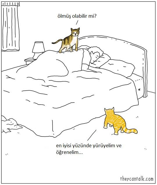hayvanlar-konusabilseydi-patiliyo-5