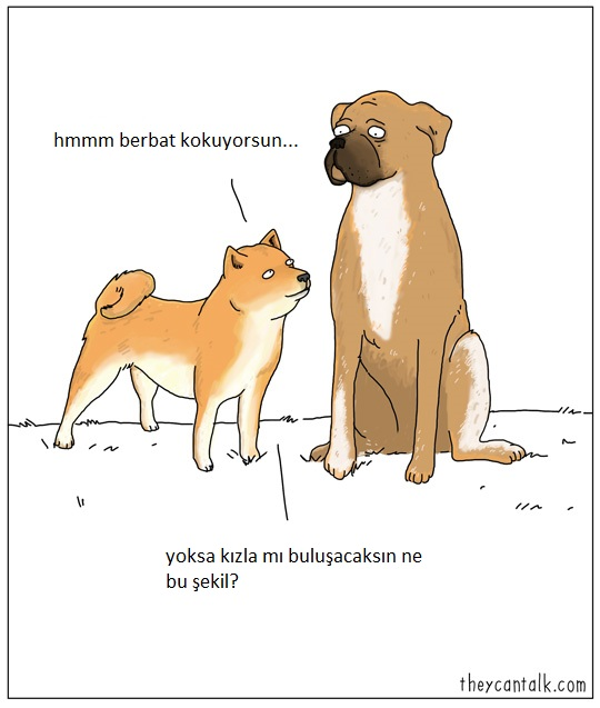 hayvanlar-konusabilseydi-patiliyo-6