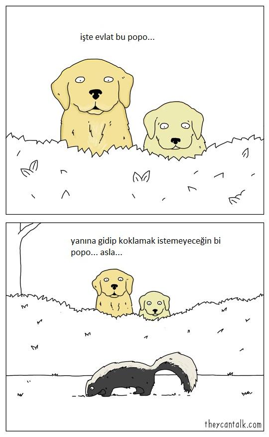 hayvanlar-konusabilseydi-patiliyo-7