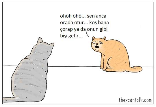 hayvanlar-konusabilseydi-patiliyo-9