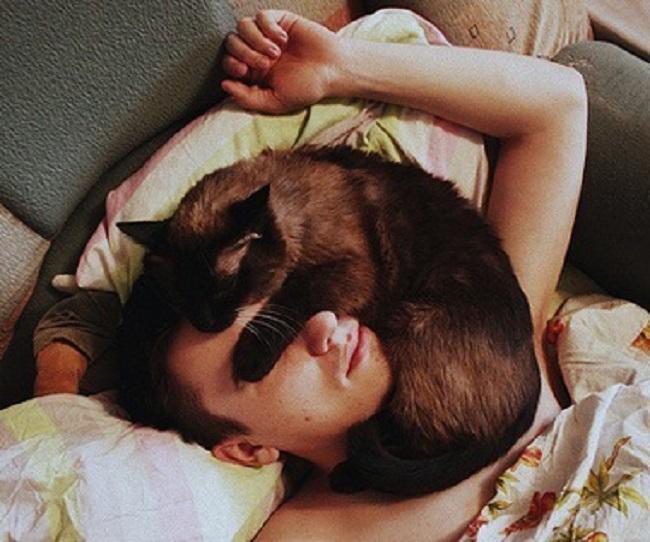 kediler-her-yerde-uyuyabilir-patiliyo-18