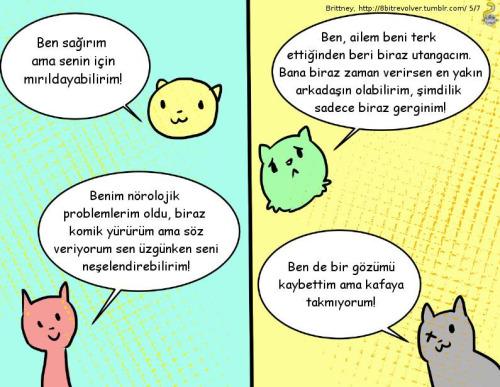 engelli-yasli-kedi-sahiplenme-patiliyo-5