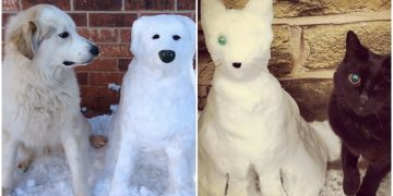"""Kardan """"Kedi ve Köpek"""" Yaparak Karın Keyfini Çıkaran 26 Hayvansever"""