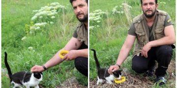 Sokak Kedileri İçin Pet Şişe Toplayıp Mama Alan Koca Yürekli Adam