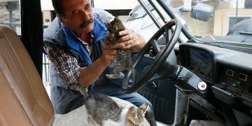 Otomobilini Sokak Kedileri İçin Yuvaya Dönüştüren Tahir Amca İle Tanışın