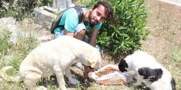Köpekleri Beslediği İçin Tehdit Edilen Hayvansever Genç