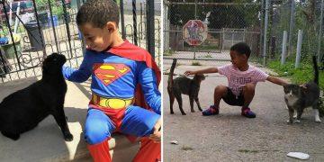 Sokak Kedilerinin Kahramanı Olan 5 Yaşındaki Güzel Kalpli Çocuk İle Tanışın