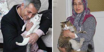 Sokak Kedilerine Evini Açan Dünyanın En Tatlı Çiftiyle Tanışın