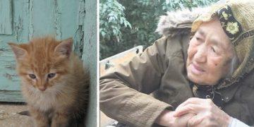 Sokak Hayvanları İçin Kapı Kapı Dolaşıp Yemek Atıklarını Toplayan Kadriye Nine İle Tanışın