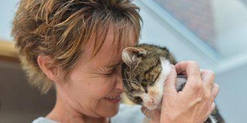 13 Yıl Sonra Kedisini Bulan Kadının Duygu Dolu Kavuşma Anı