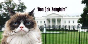 """Huysuz Kedi Olarak Bilinen """"Grumpy Cat"""" Sahibine 710 Bin Dolar Kazandırdı"""