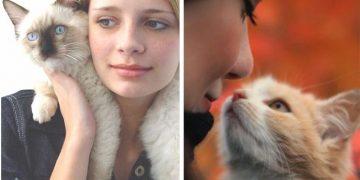 Yeni Kedi Sahiplenen İnsanlarda Gördüğümüz 13 Eğlenceli Davranış
