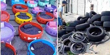 Kullanılmayan Tekerlekleri Sokak Hayvanları İçin Yatağa Çeviren Güzel Kalpli Genç